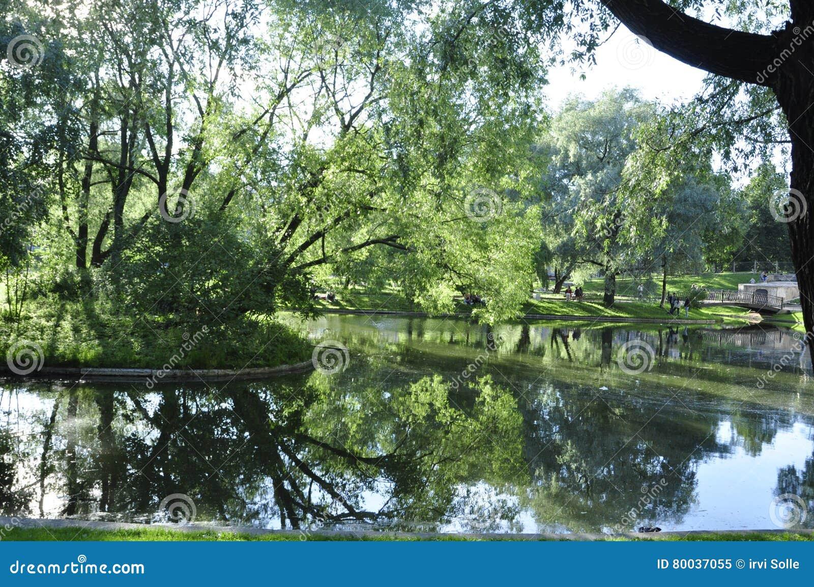 Drewniany plandeki wody lustra spojrzenie Lato gorący greenfield Trawa