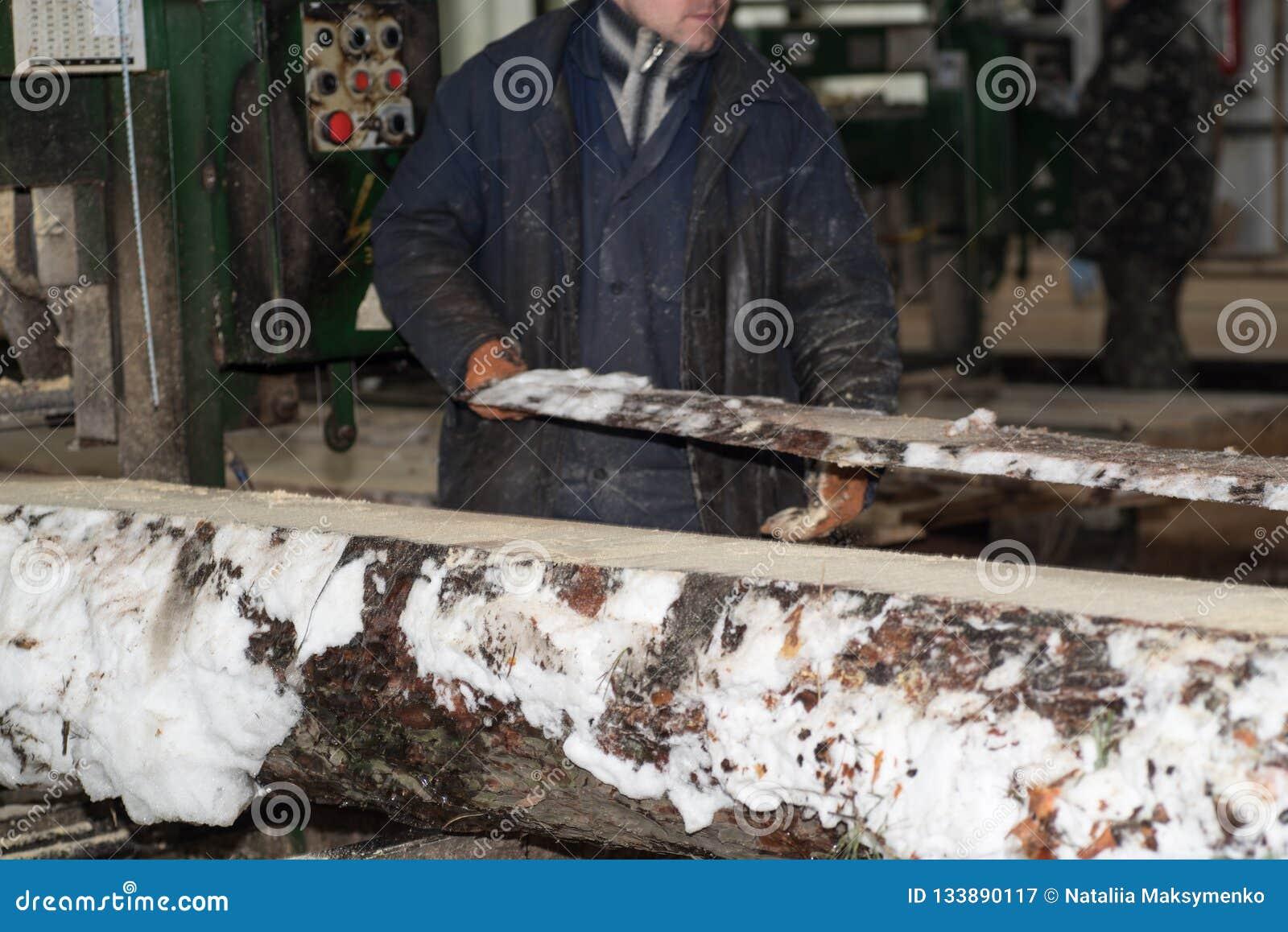 Drewniany przerób Ciąć loguje się deski W zima procesie drzewo