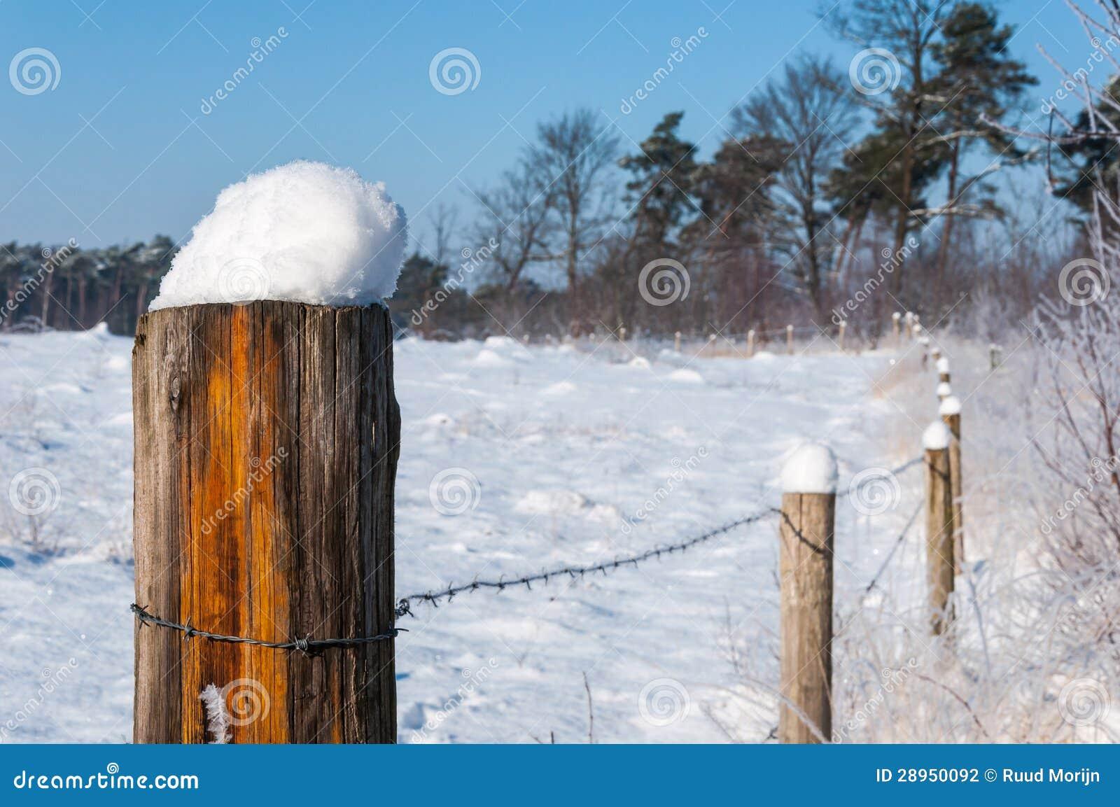 Drewniany słup zakrywający z śniegiem