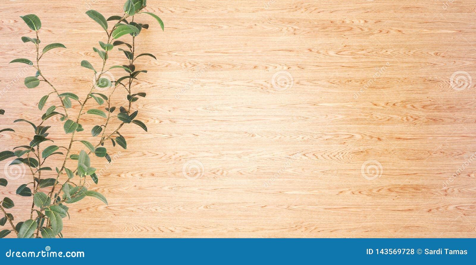 Drewniany tło z rośliny 3D ilustracją