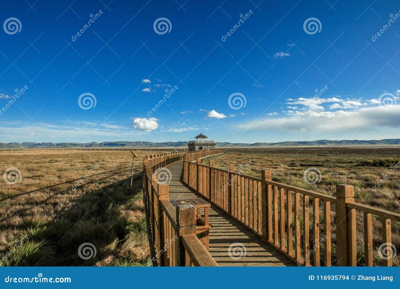 Drewno most przy Ruoergai obszarem trawiastym, Xiahe, Gannan, Chiny