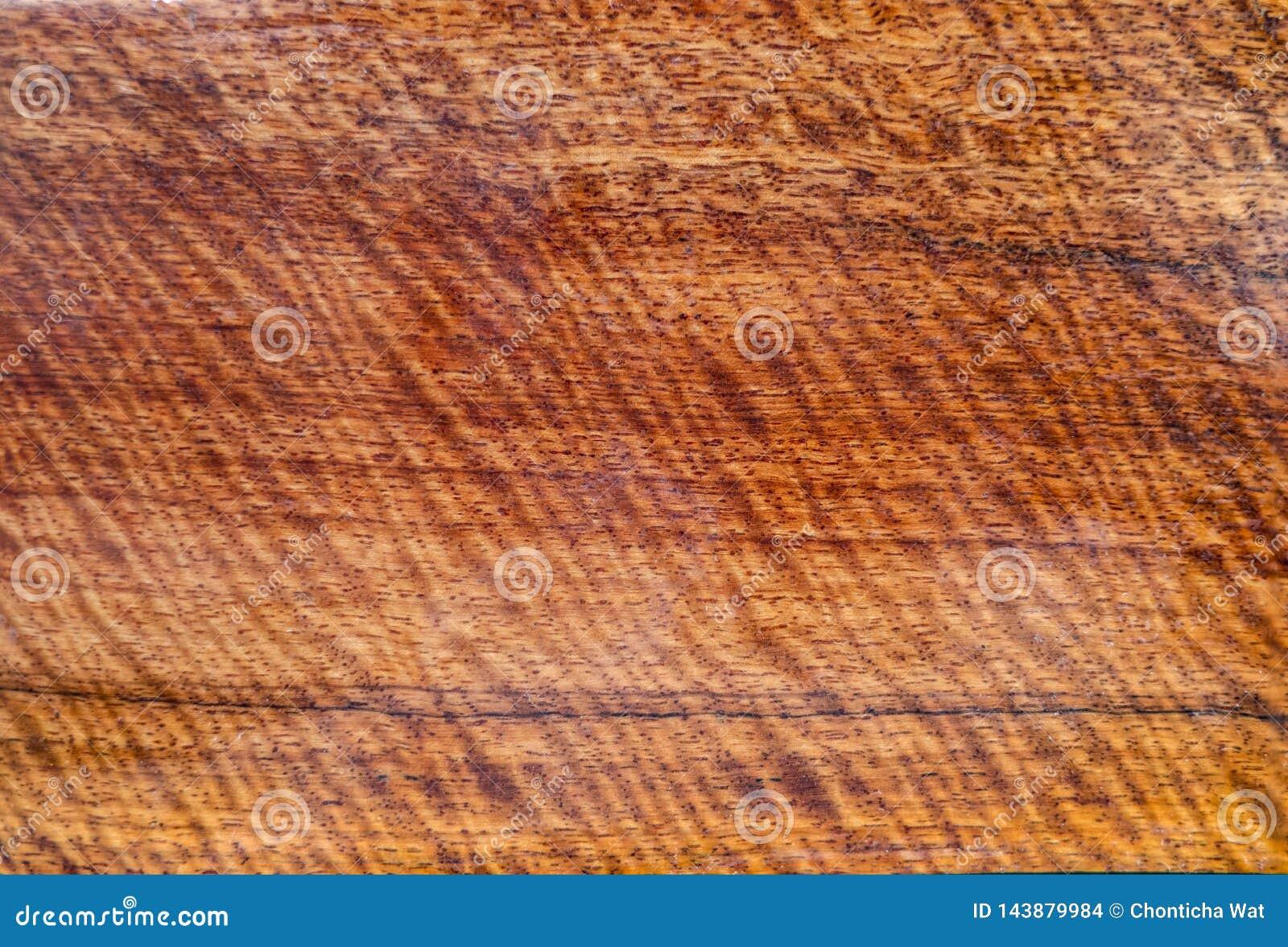 Drewno tygrysiego lampas lub kędzierzawą lampas adrę, drewniany egzotyczny piękny wzór dla rzemioseł