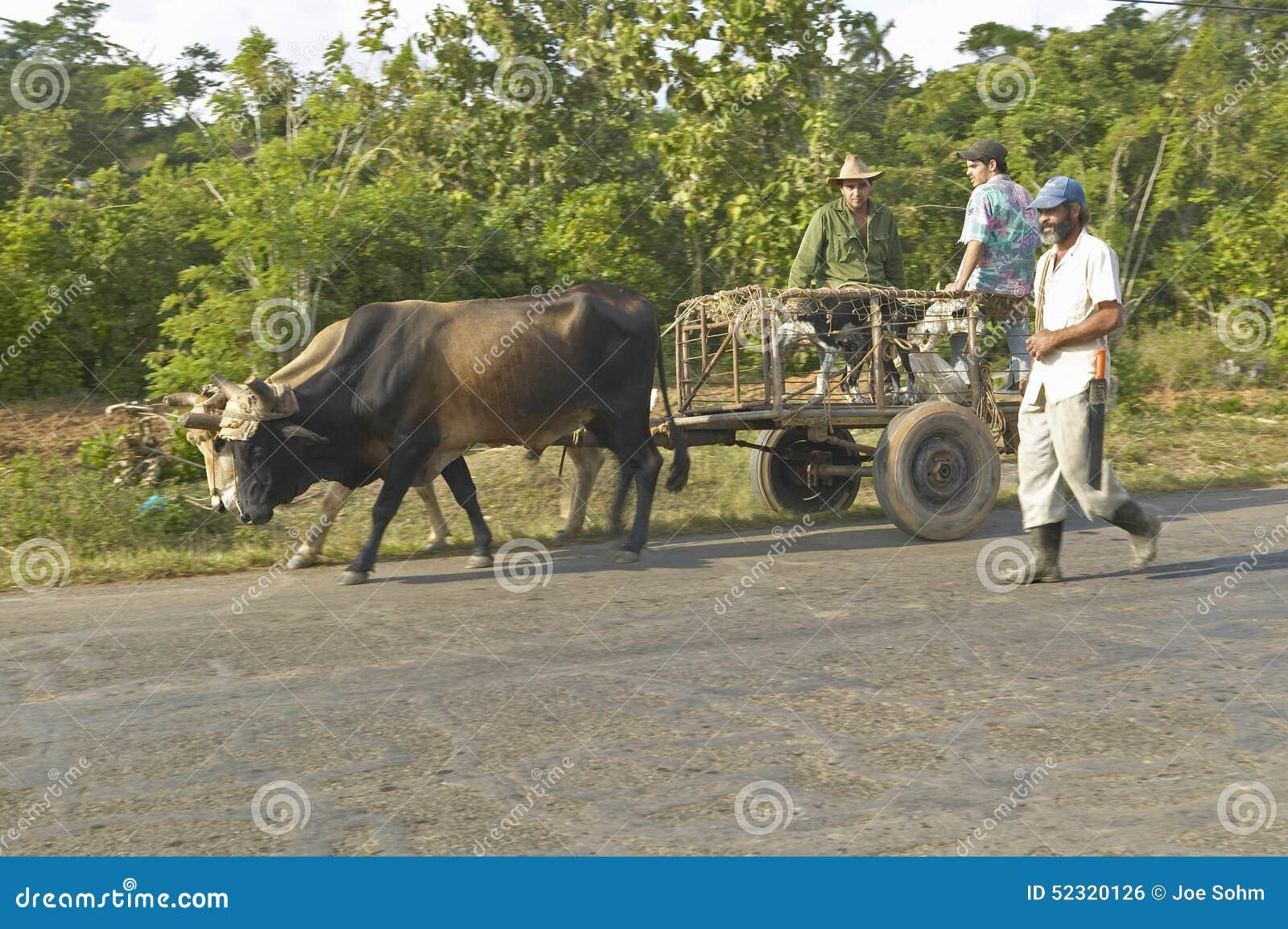 Drie mensen reizen met een paard getrokken kar door platteland van centraal Cuba