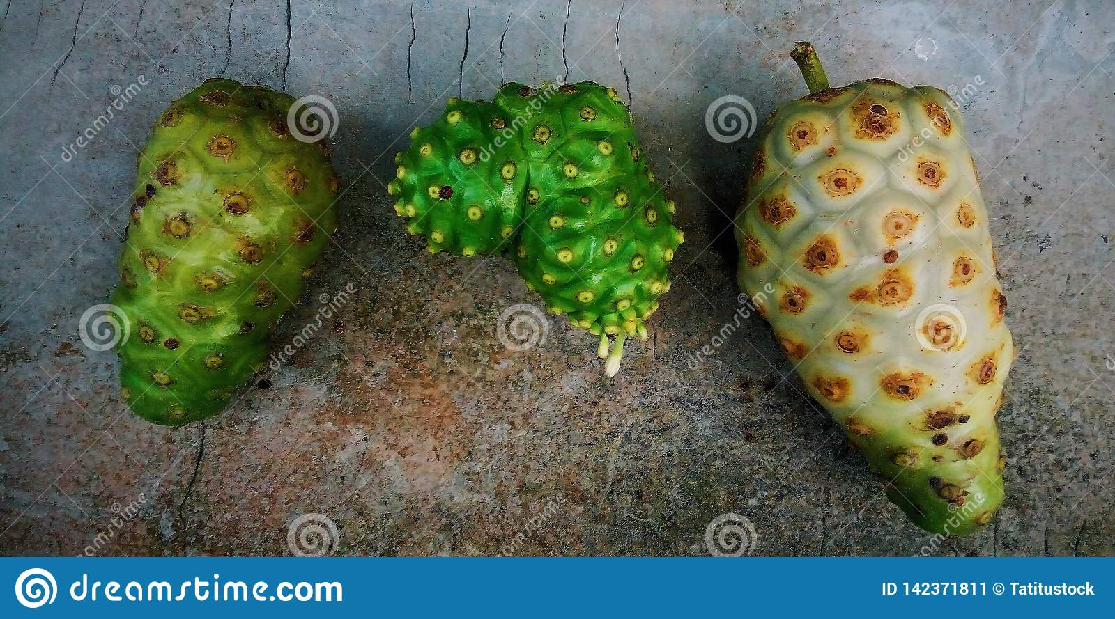 Drie Noni Fruits