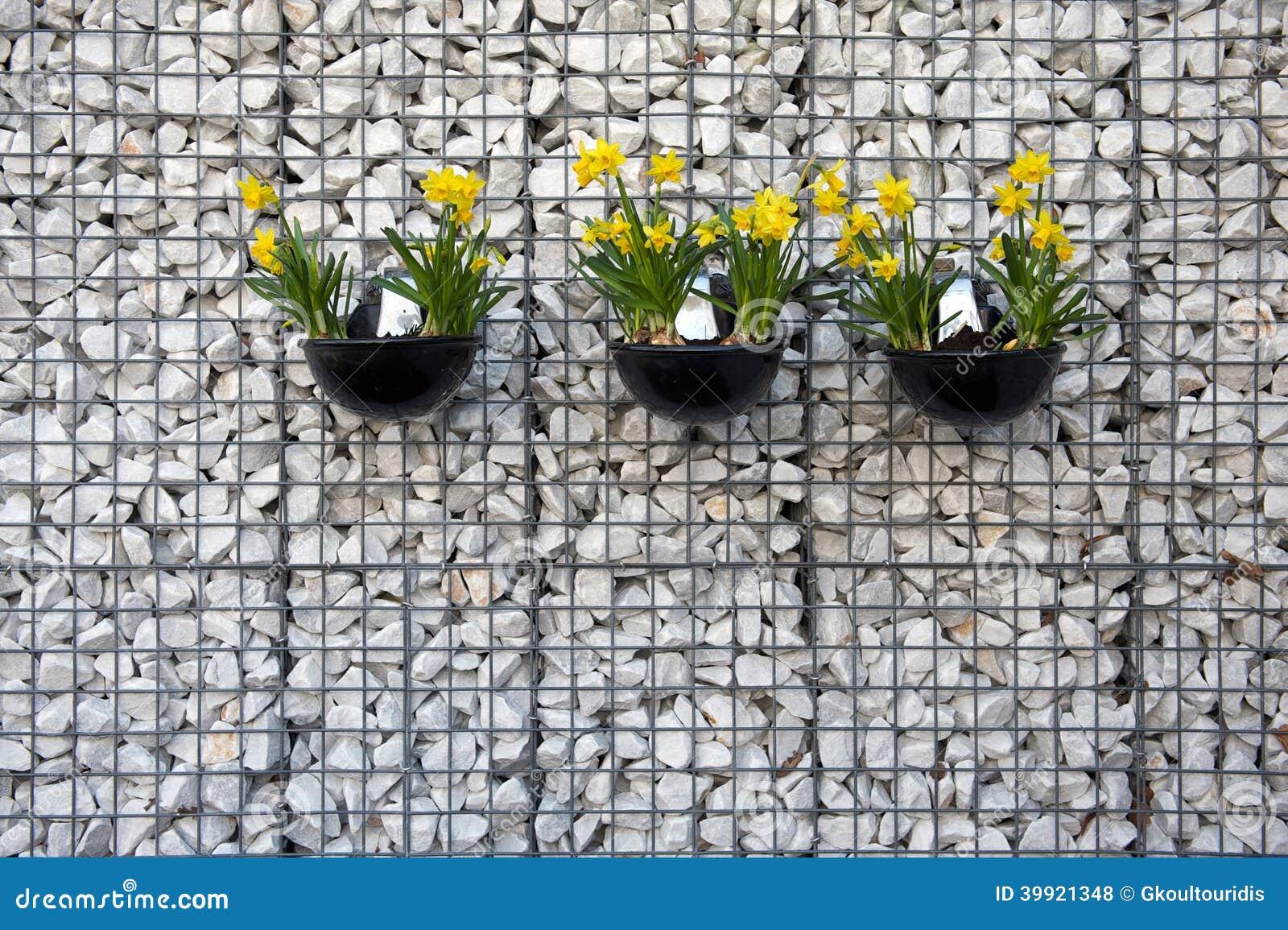 Drie potten met gele narcissen die op de witte muur hangen stock foto afbeelding 39921348 - Binnenkleuren met witte muur ...