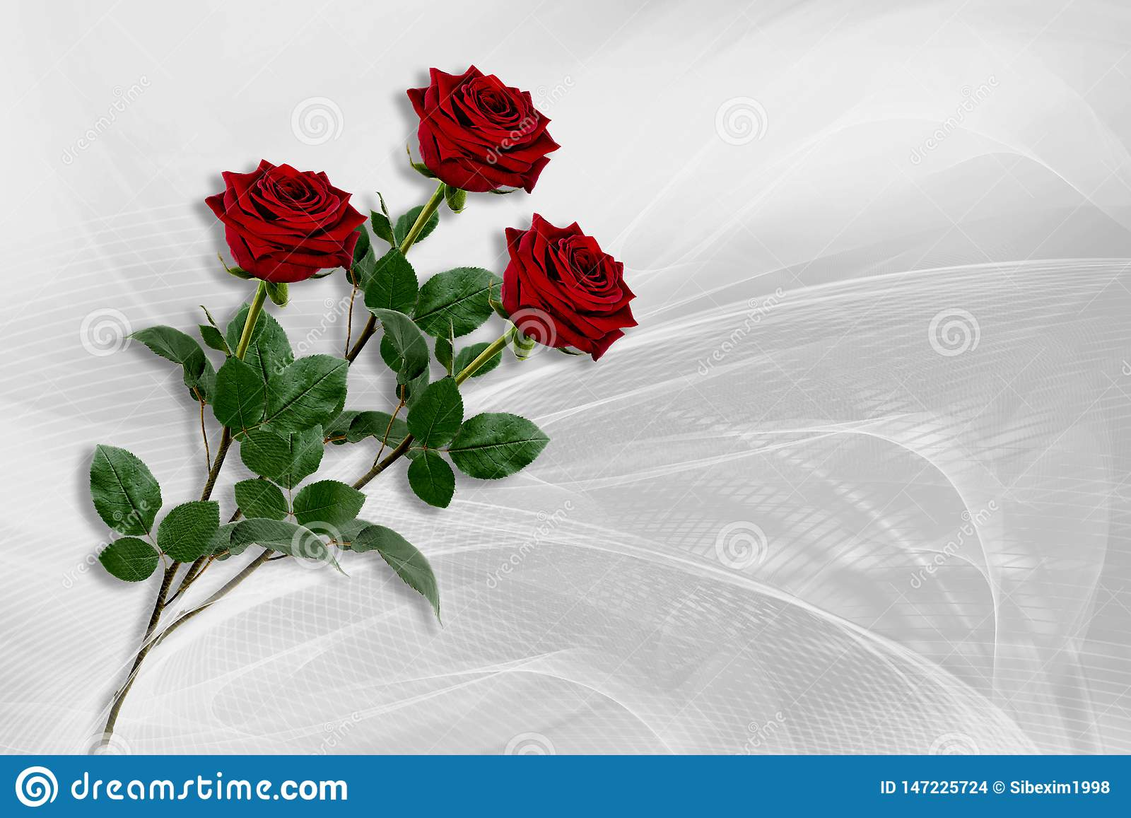 Drie rode rozen liggen op een grijs-witte achtergrond