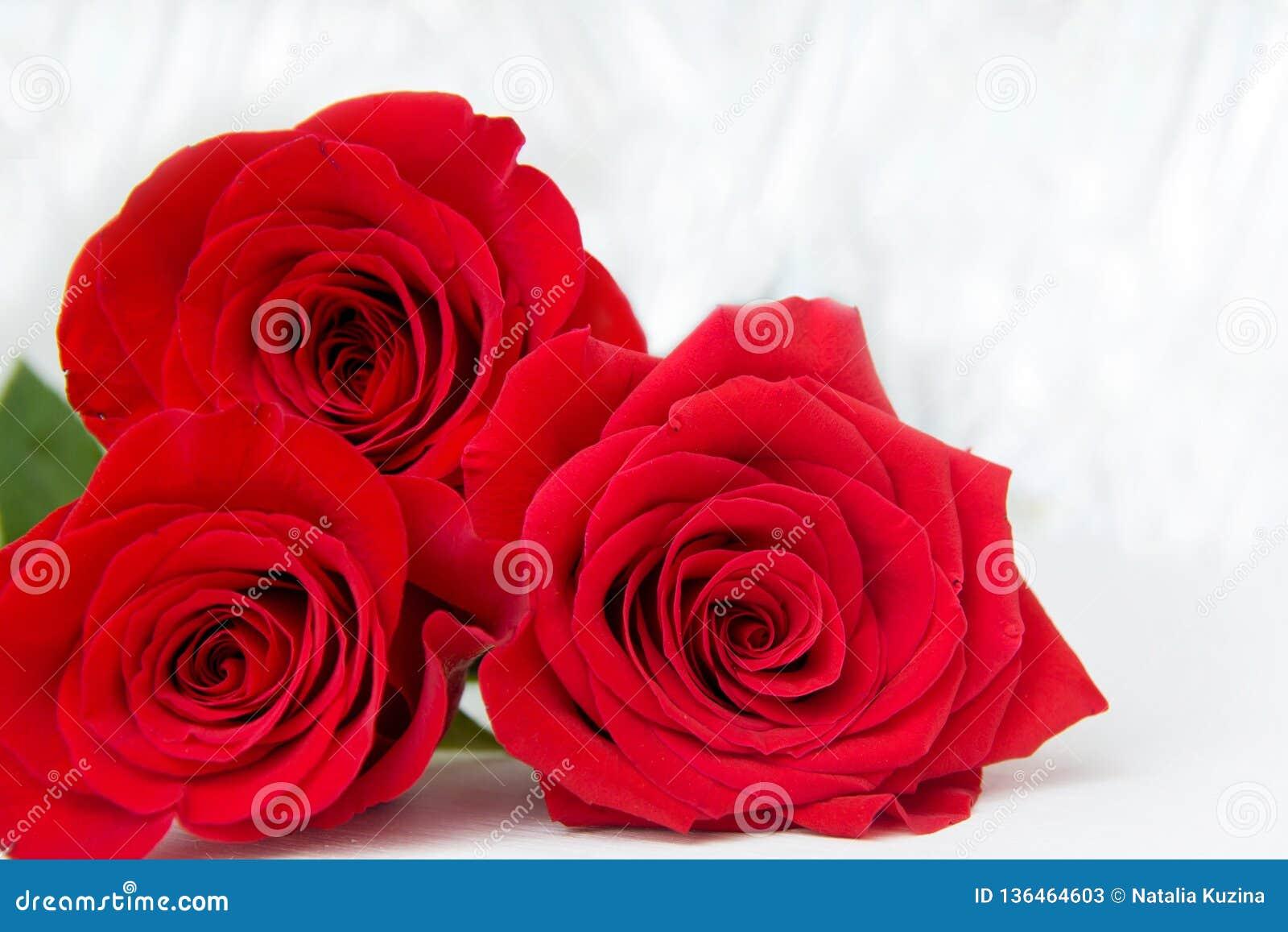 Drie Rode Rozen met bokeachtergrond exemplaarruimte - Valentijnskaarten en 8 Maart-Moeder Women' s Dagconcept