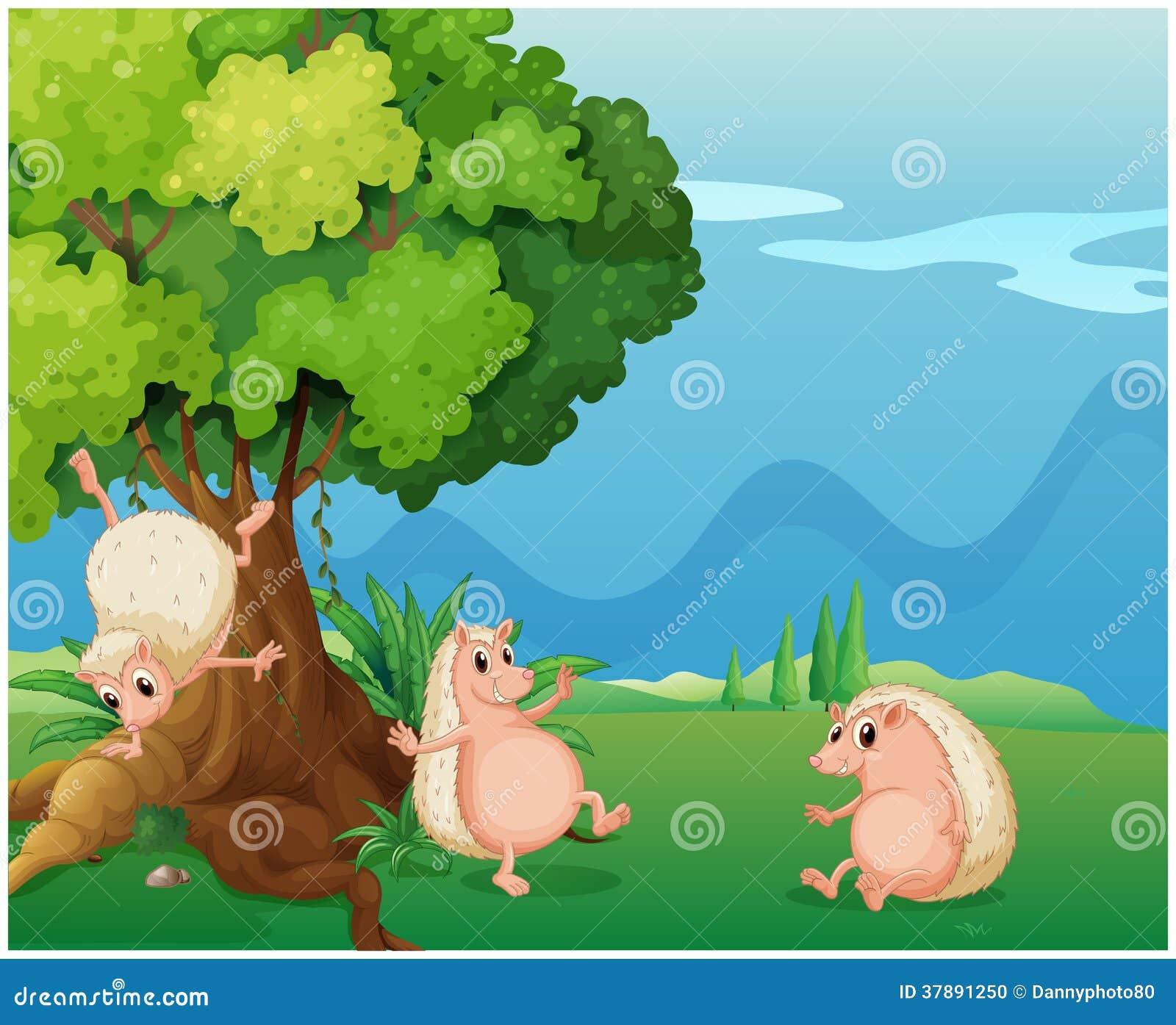 Drie speelse molehogs dichtbij de oude boom