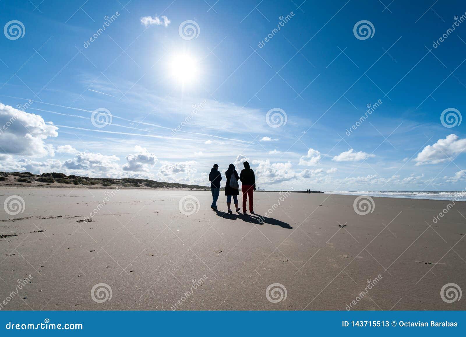 Drie vrienden die op strand in de winter lopen
