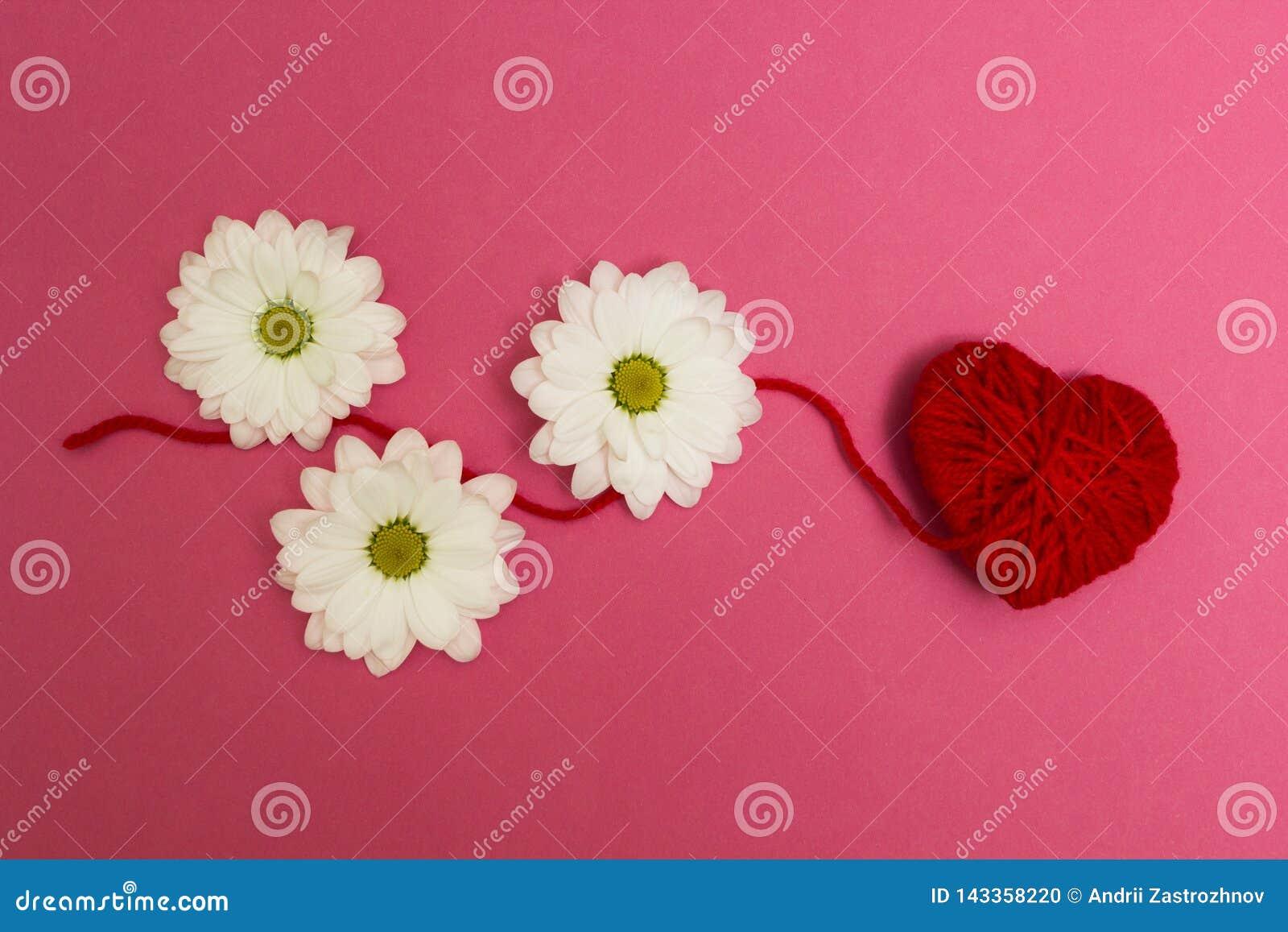 Drie witte bloemen en een rood hart op een roze achtergrond