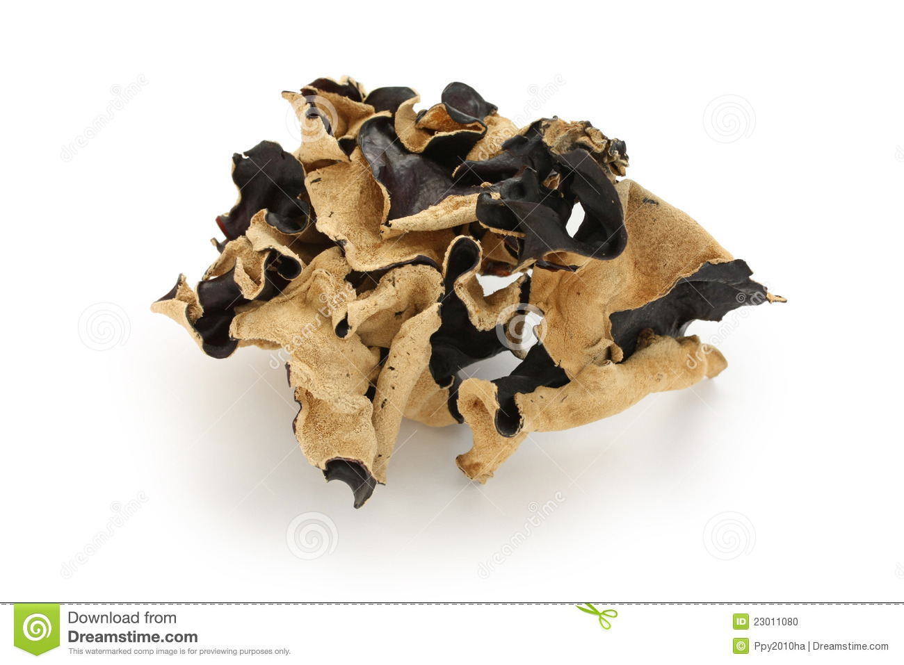 Dried Cloud Ear Fungus Stock Photo - Image: 23011080 Traditional Chinese Medicine