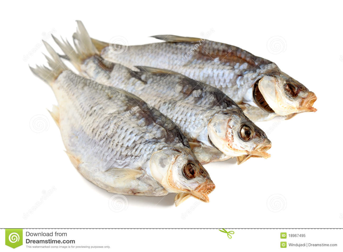 Dried fish stock image image of meal salty rudd for Too cool fishing