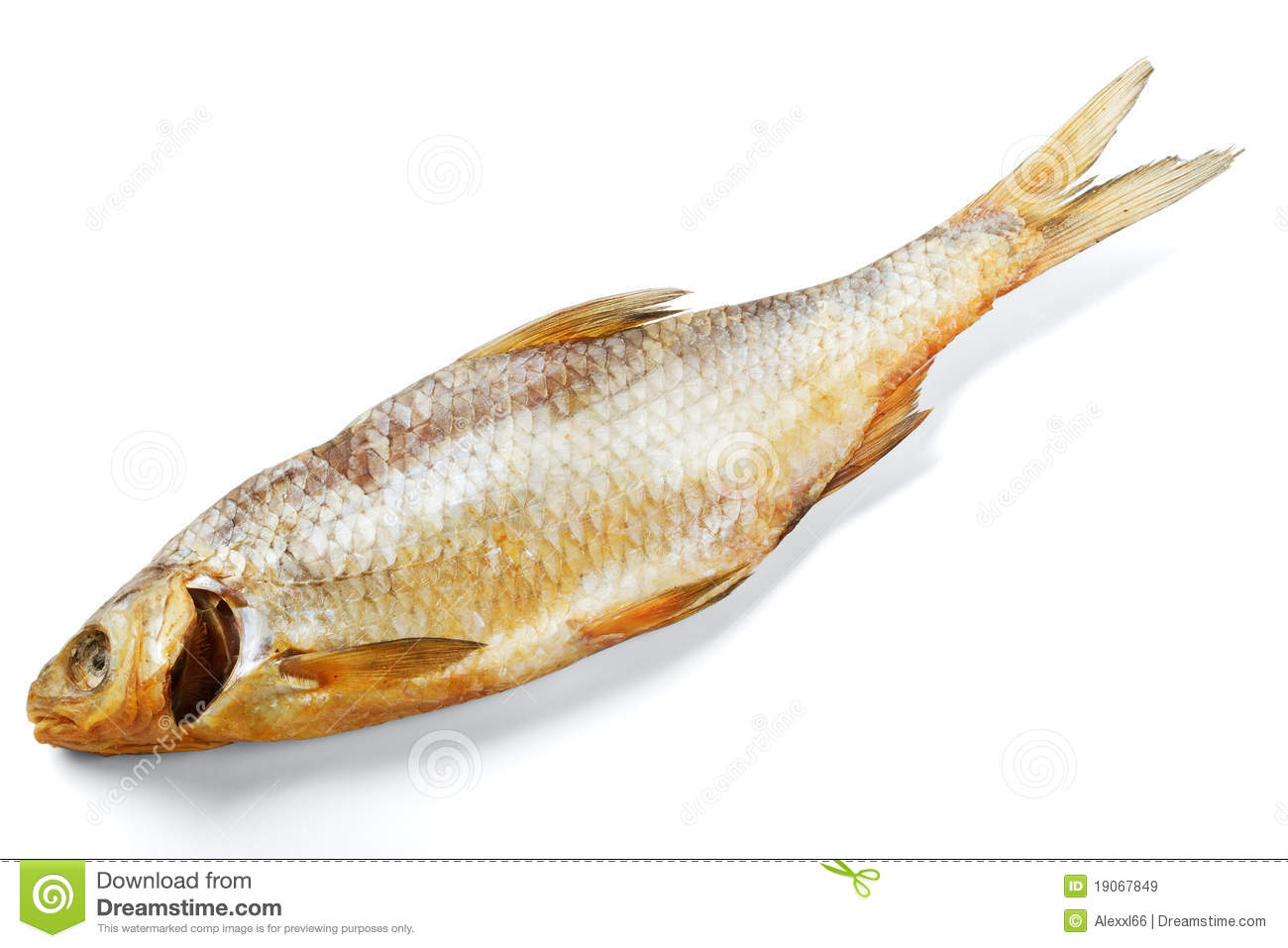 Dried fish royalty free stock images image 19067849 for Opah fish price