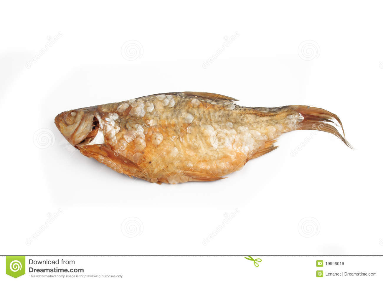 Dried fish stock image. Image of nobody, saline, cutout - 19996019 for Dried Fish Clipart  174mzq