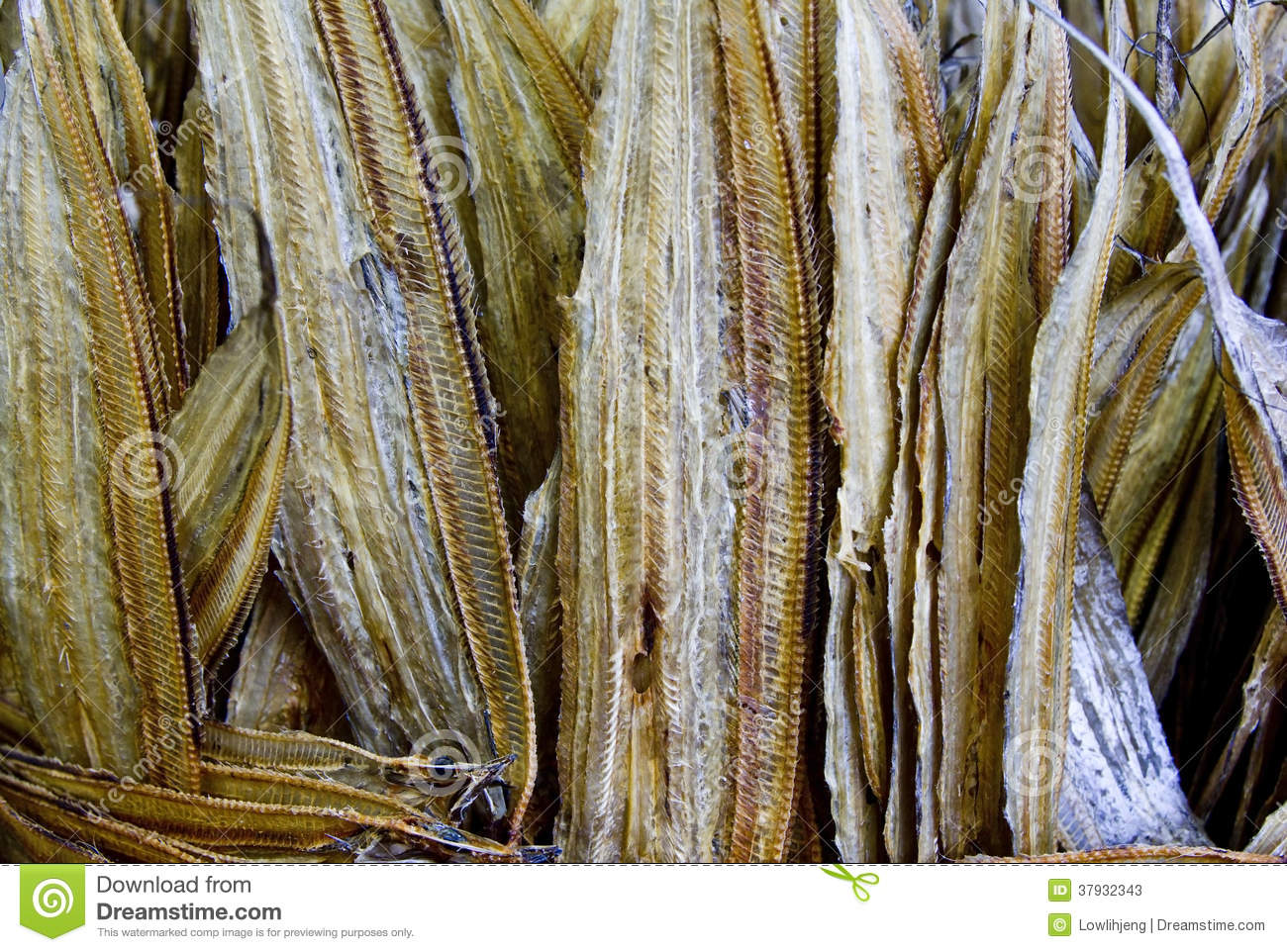 Dried fish stock image image of shop long southeast for Dried fish philippines