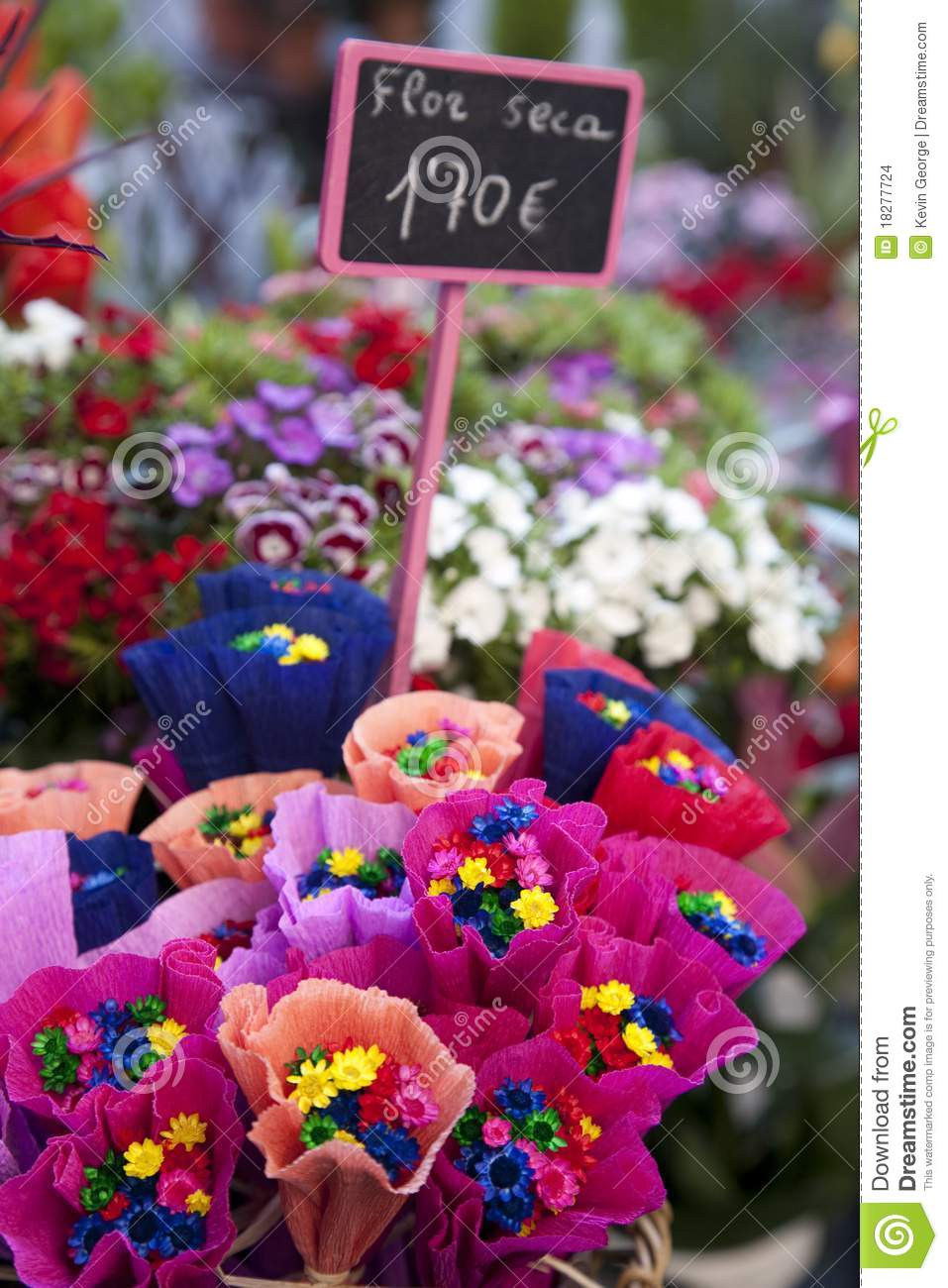 Dried Flowers For Sale Stock Photo Image Of Nature Price 18277724