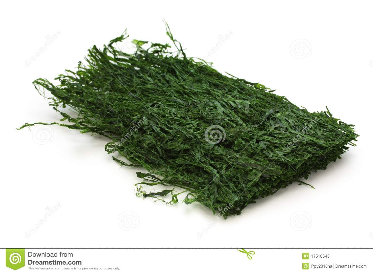 Dried green laver aonori japanese food royalty free for Cuisine on the green