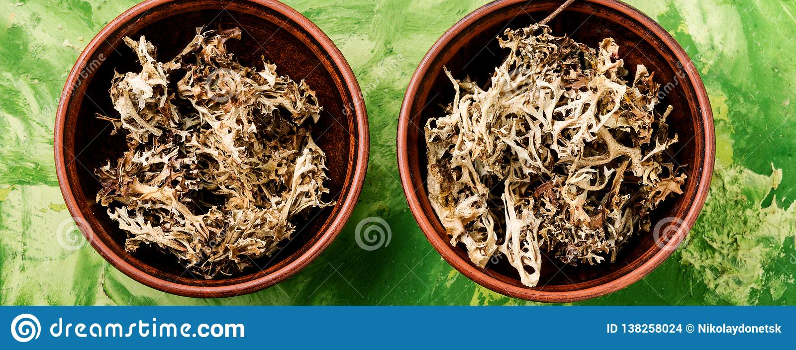 Dried Icelandic Medicinal Moss Stock Photo Image Of Homeopathic