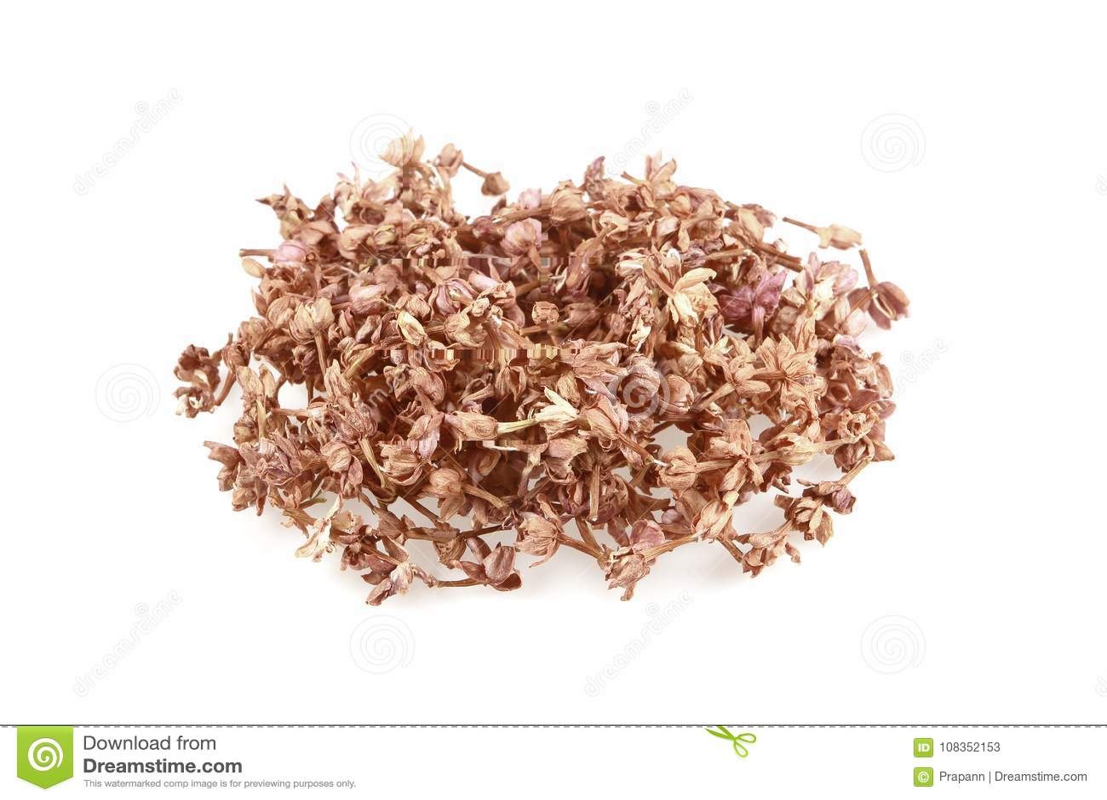 Dried Jasmine Flower On White Background Stock Image Image Of Pile