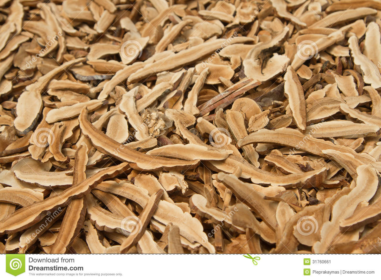 Dried lingzhi mushroom ,traditional chinese medicine