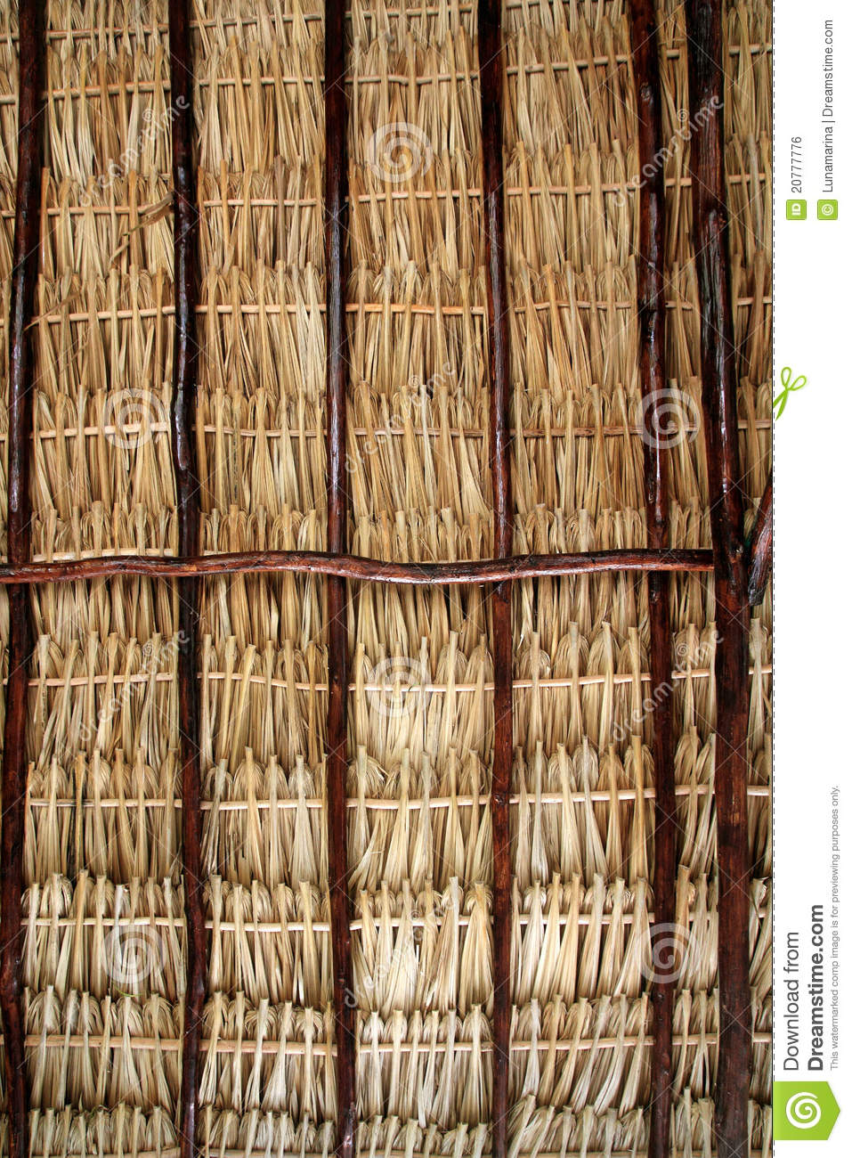 Dried Palm Tree Leaves Palapa Roof And Beams Stock Photo
