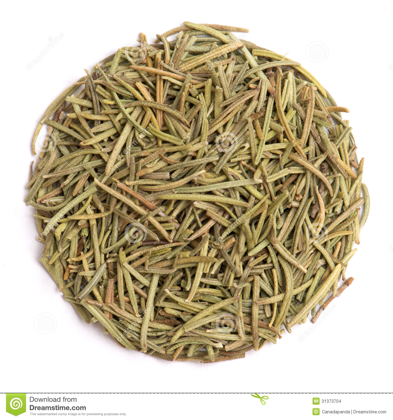 Dried rosemary leaves stock photo. Image of leaf, natural ...
