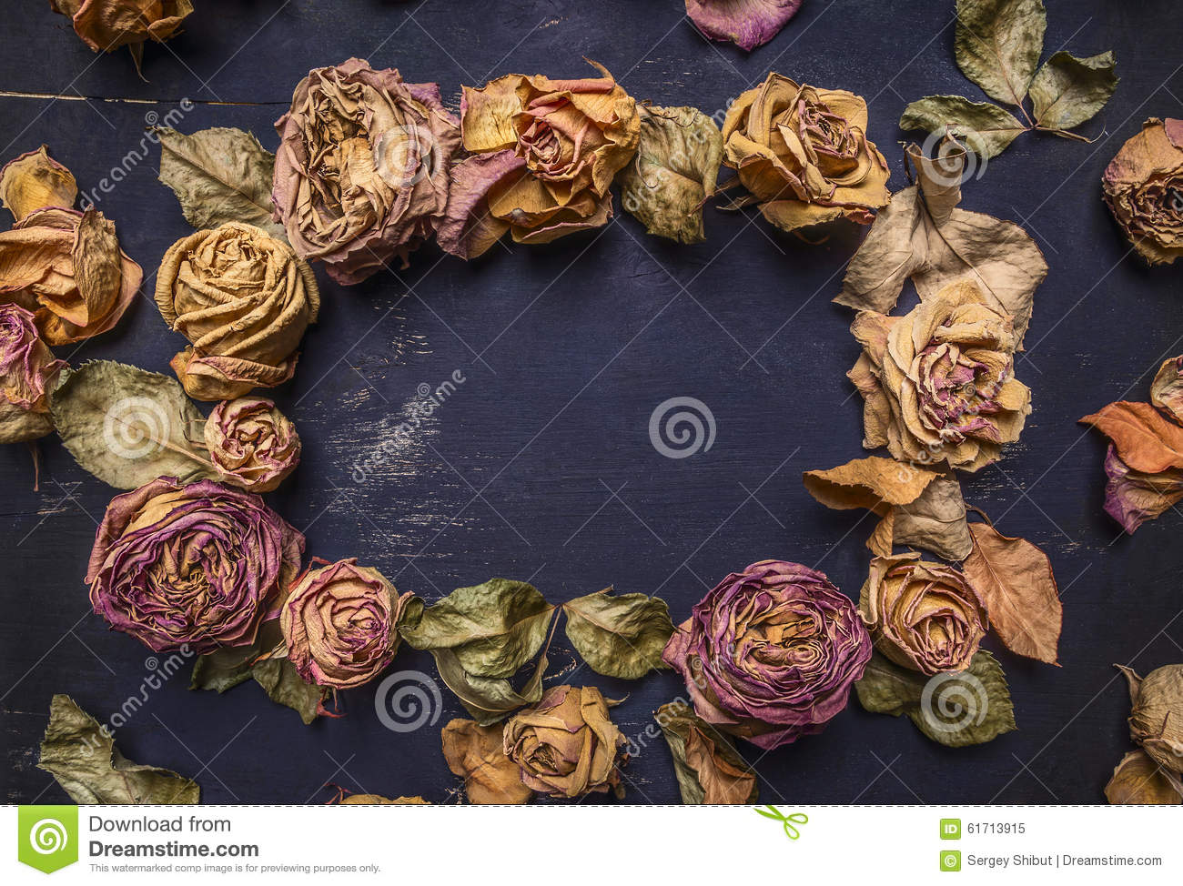 Dried roses with petals, lined frame with space for text wooden rustic background top view close up