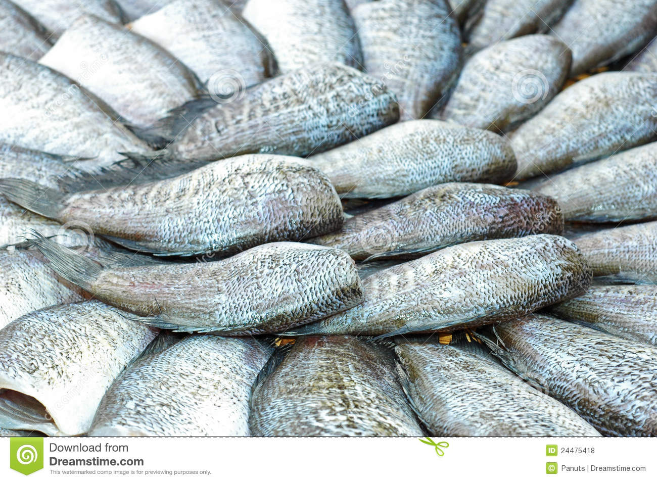 Dried salt fish royalty free stock photos image 24475418 for Dried salted fish