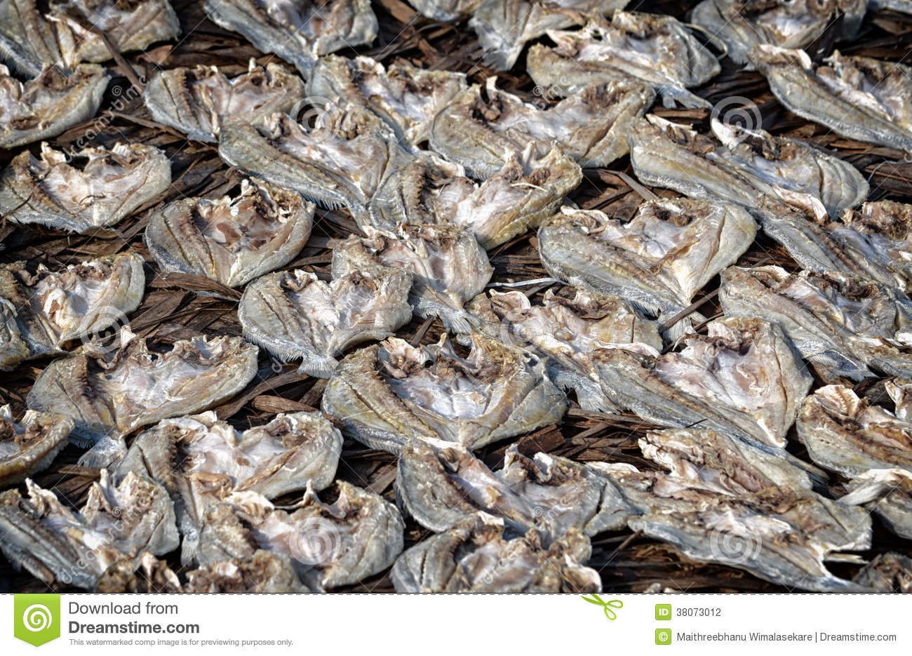 Dried salted fish stock photography image 38073012 for Dried salted fish