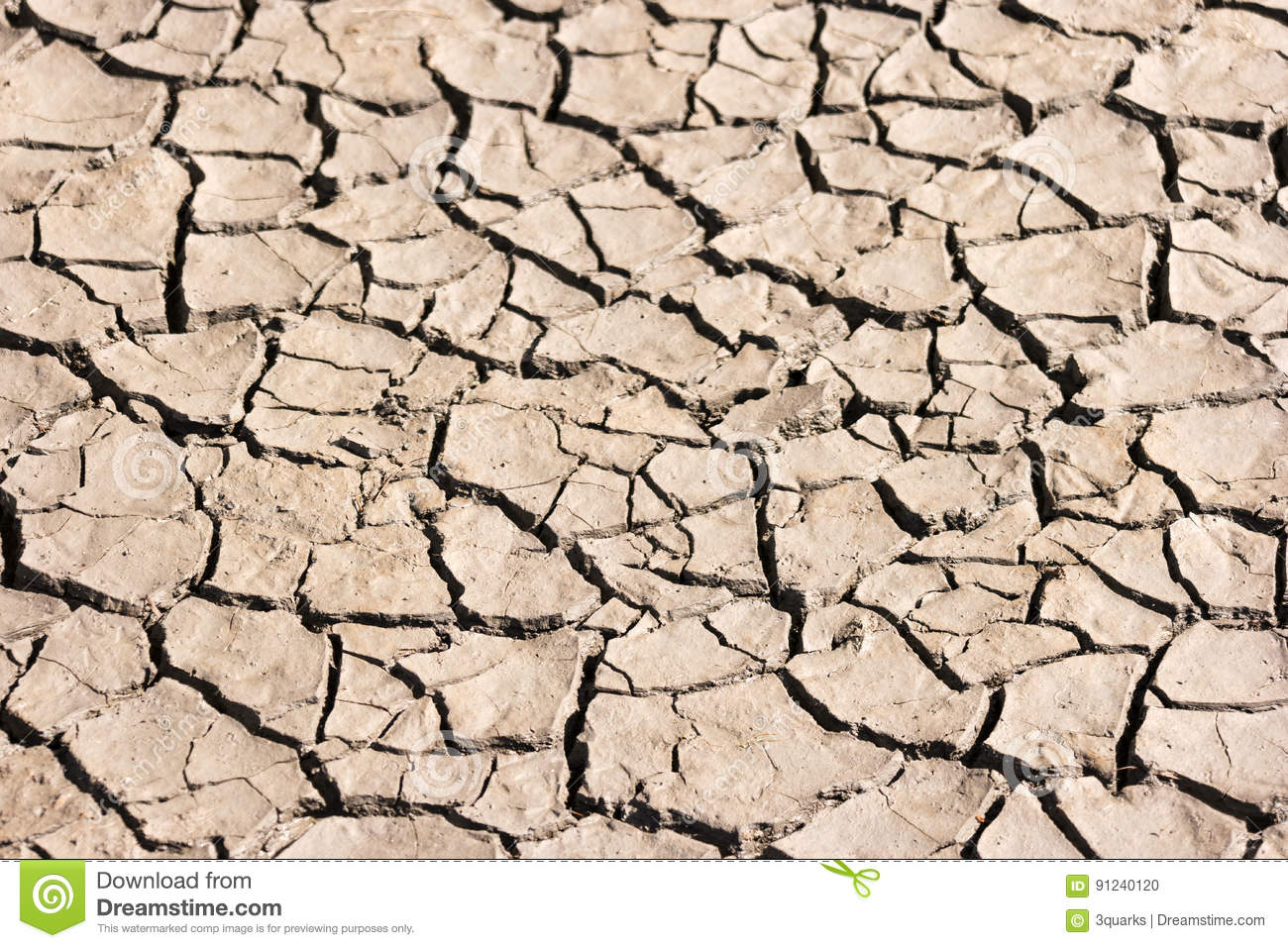 Dried Soil of a Mud Flat