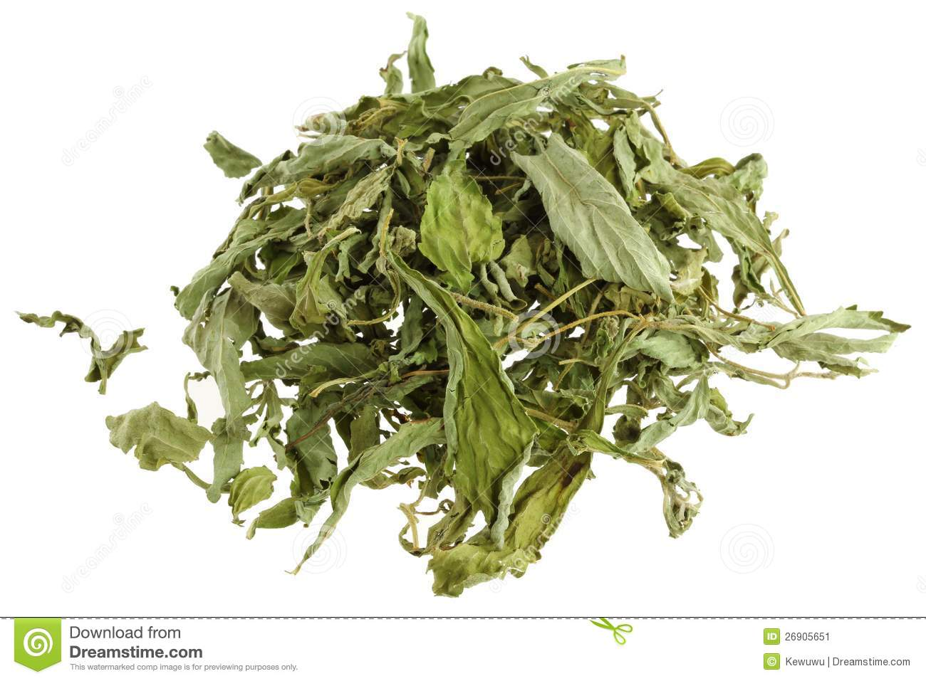Dried Stevia leaves (sweet leaf, Sugar leaf)
