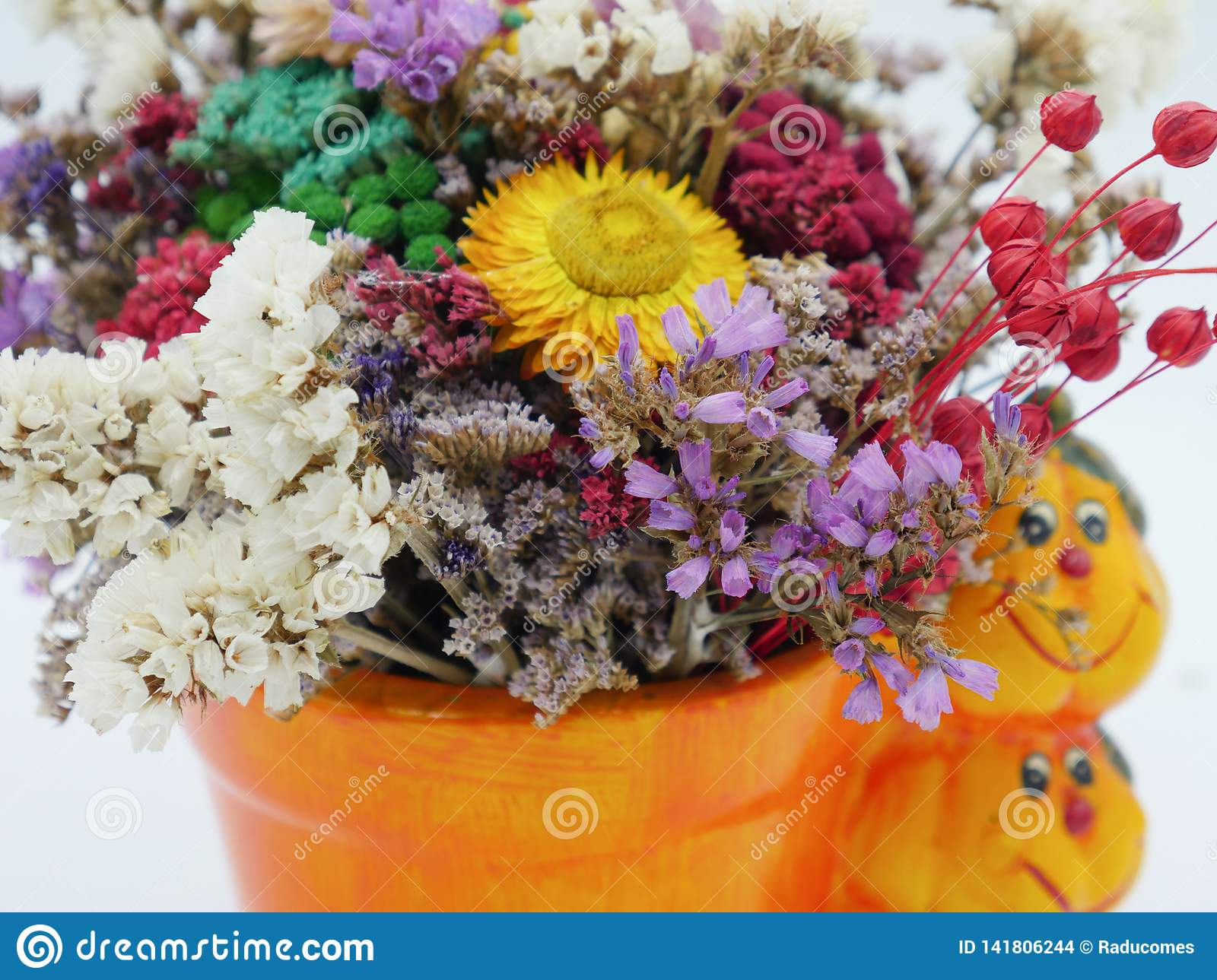 Dried straw flower positioned in a ceramic pot