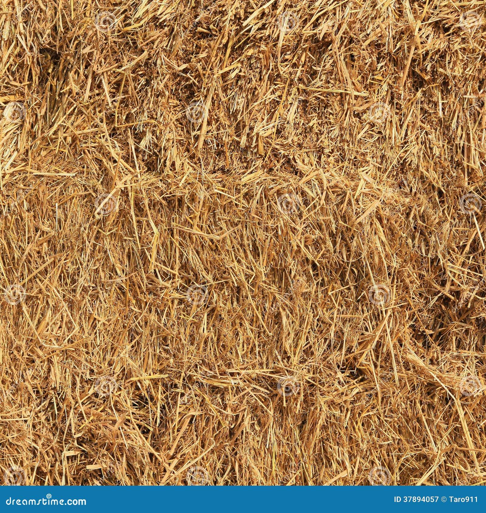 Dried straw