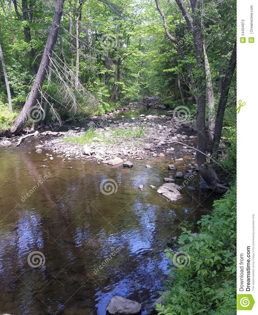 Dried up stream editorial photography. Image of water ...