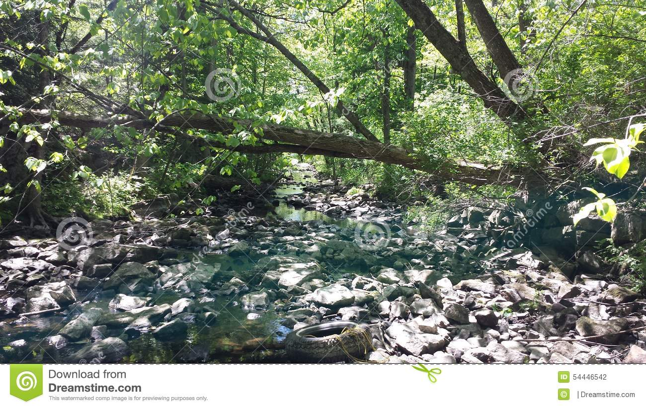 Dried up stream editorial photography. Image of pretty ...