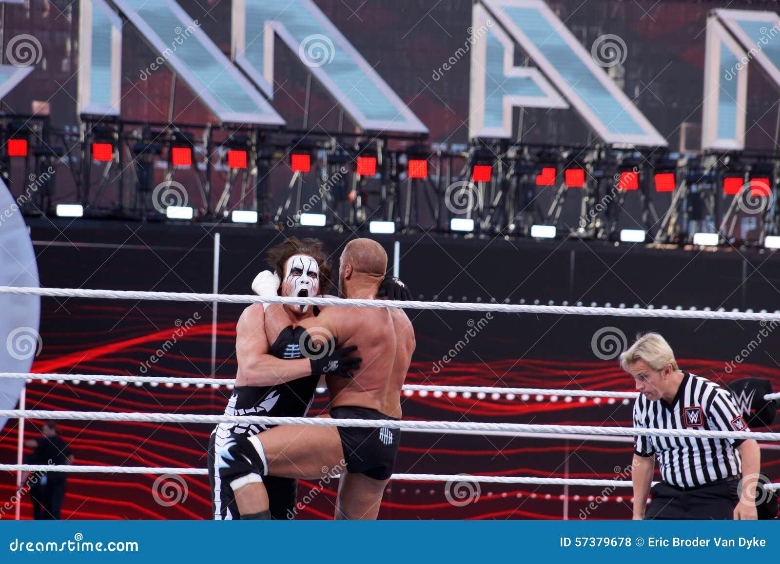 Drievoudige h-knieën Sting aangezien zij lock-up in ring tijdens gelijke