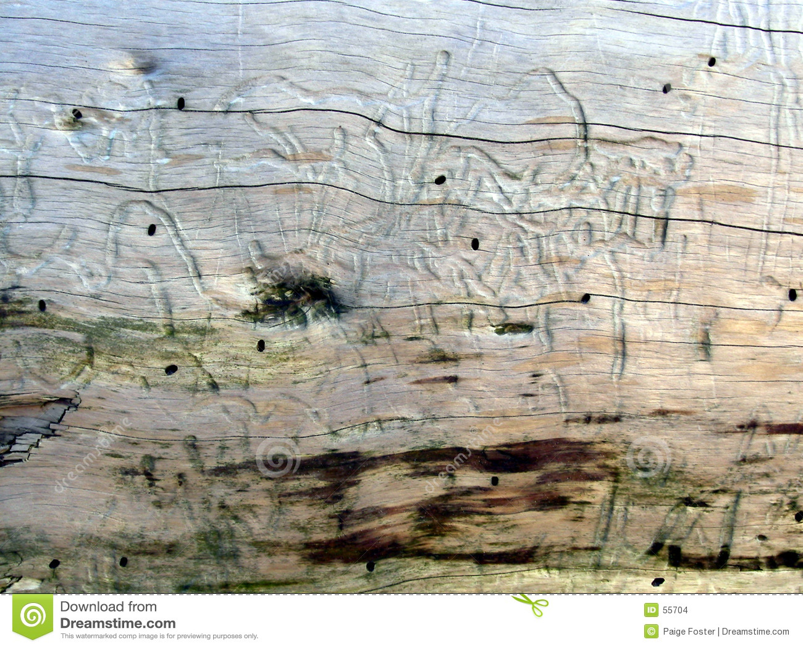 Driftwood 1 konsystencja