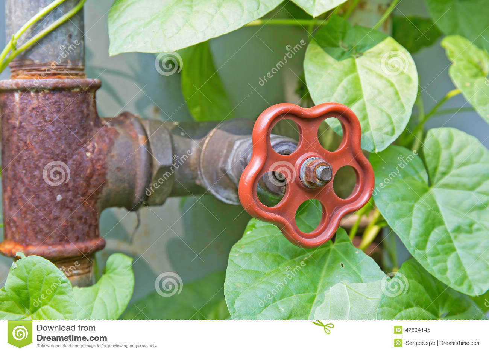 Download Dripping Garden Spigot Stock Image. Image Of Garden, Spigot    42694145