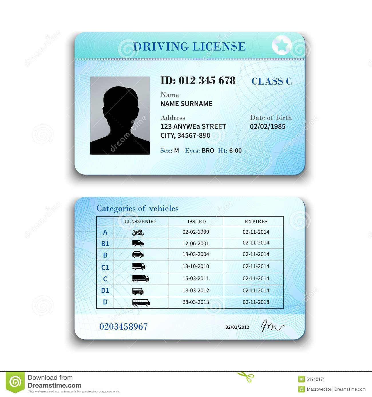 Driver License Illustration Stock Vector