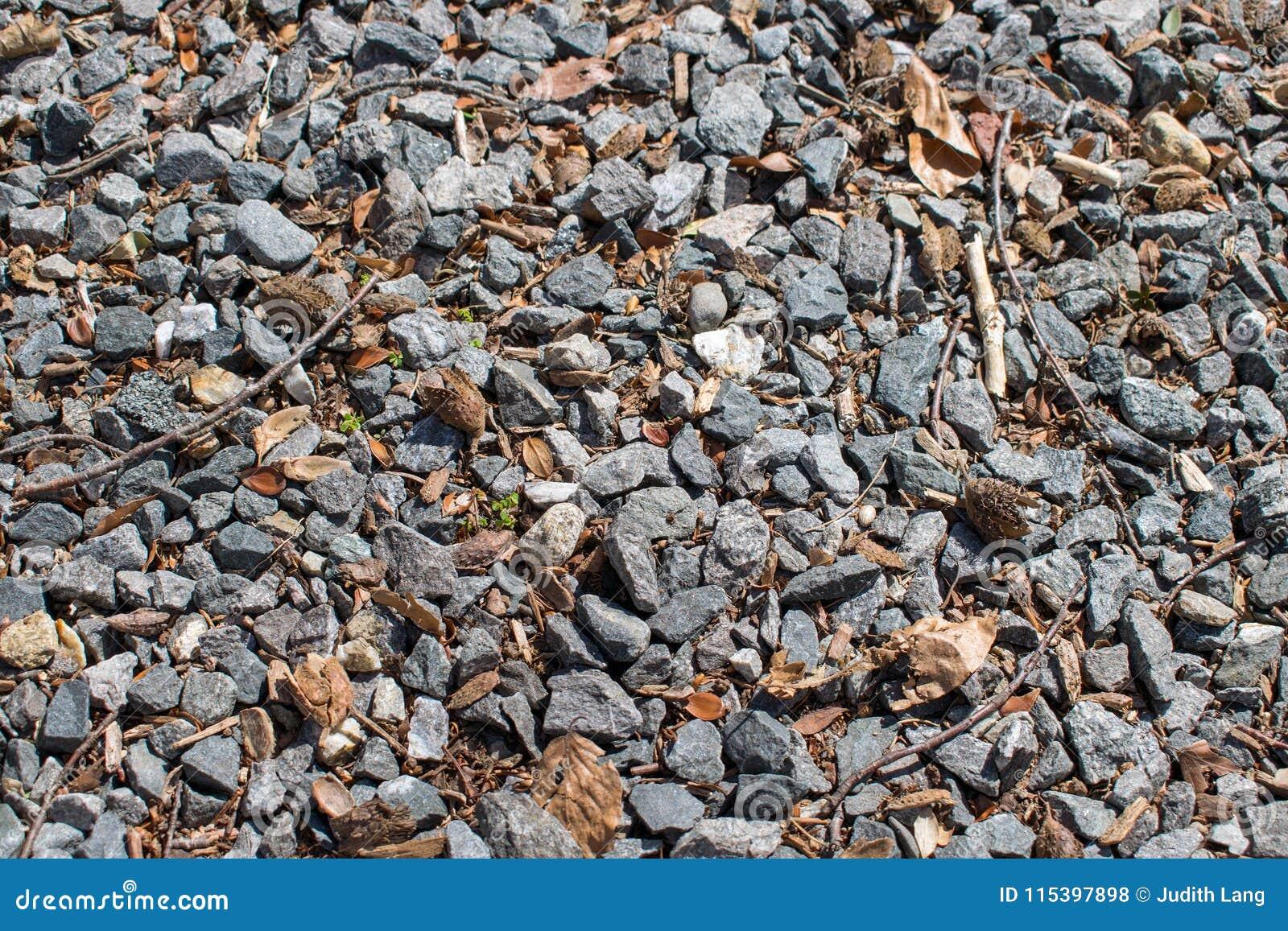 Driveway αμμοχάλικο που αναμιγνύεται με τα φύλλα και τους κλαδίσκους