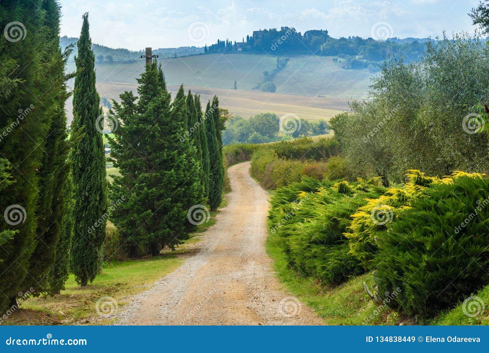 Droga w Chianti regionie w prowincji Siena tuscany Włochy