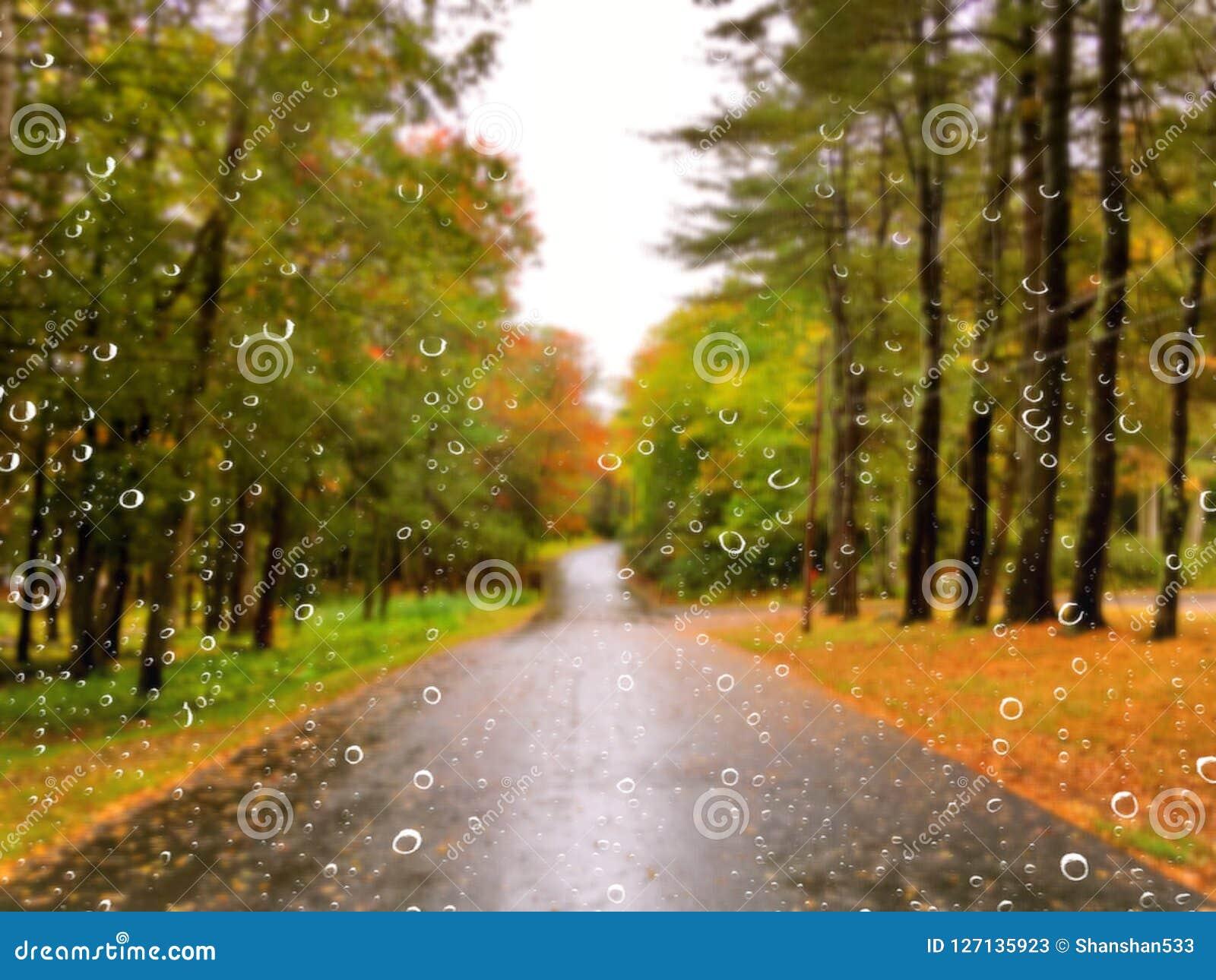 Droga w jesieni na deszczowym dniu