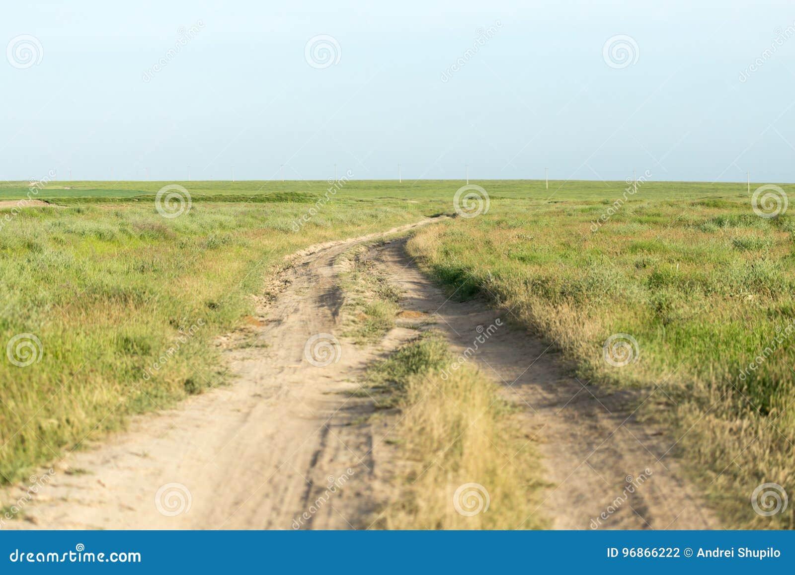 Droga w polu