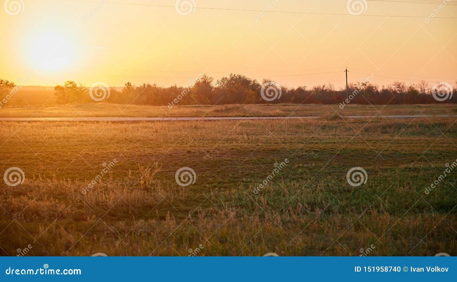 Droga w polu przy wieczór zmierzchem