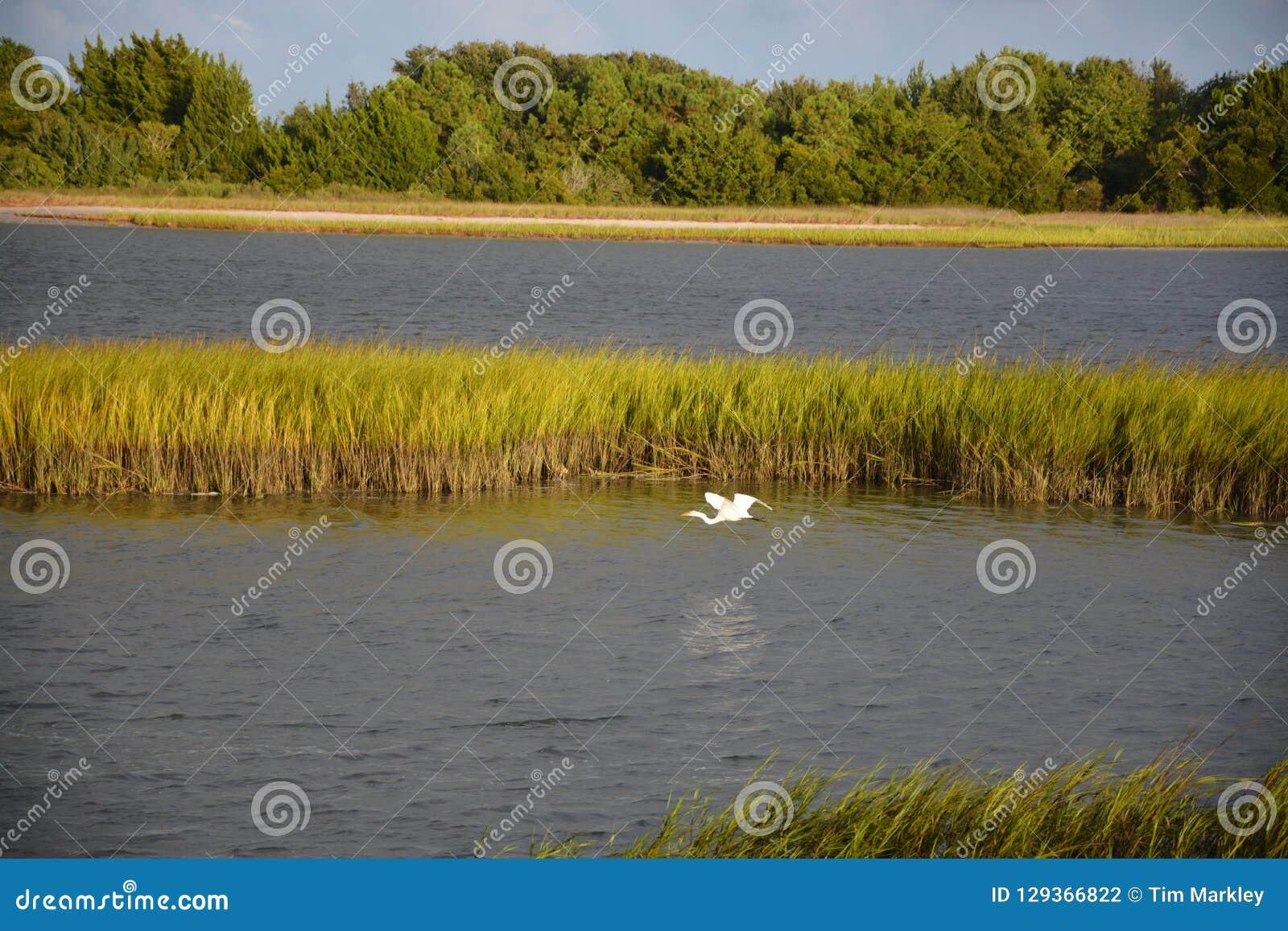 Droga wodna widok z ptasim lataniem