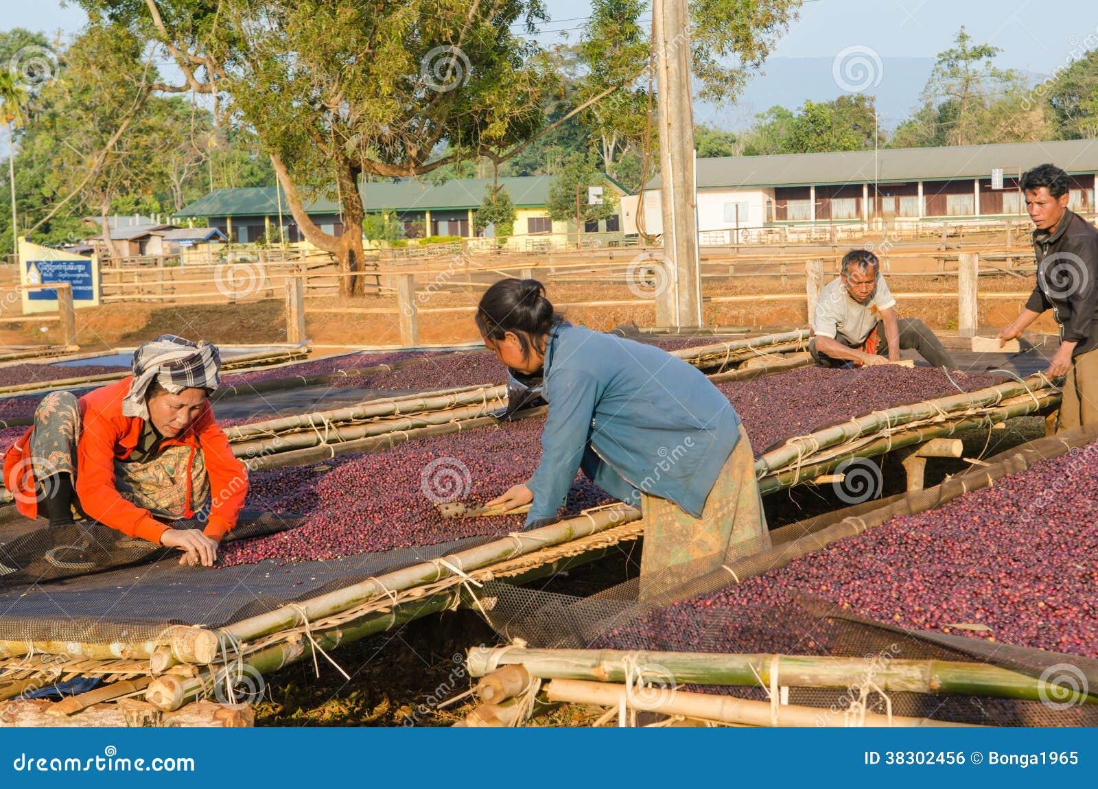 Salavan Laos  city photos : SALAVAN, LAOS PDR 26 JANUARI: De niet geïdentificeerde ...