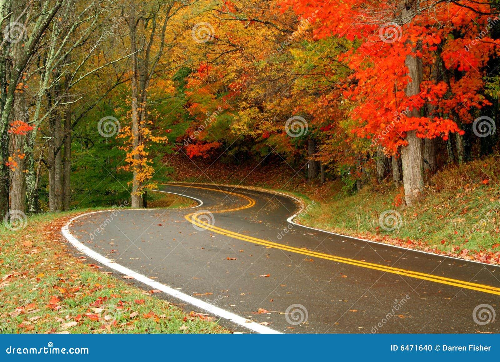 Drogi jesienią