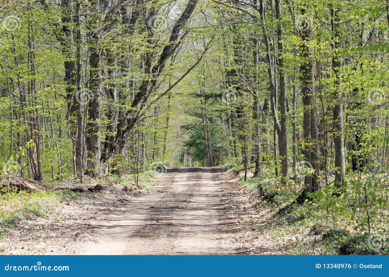 Drogowa wiejska wiosna