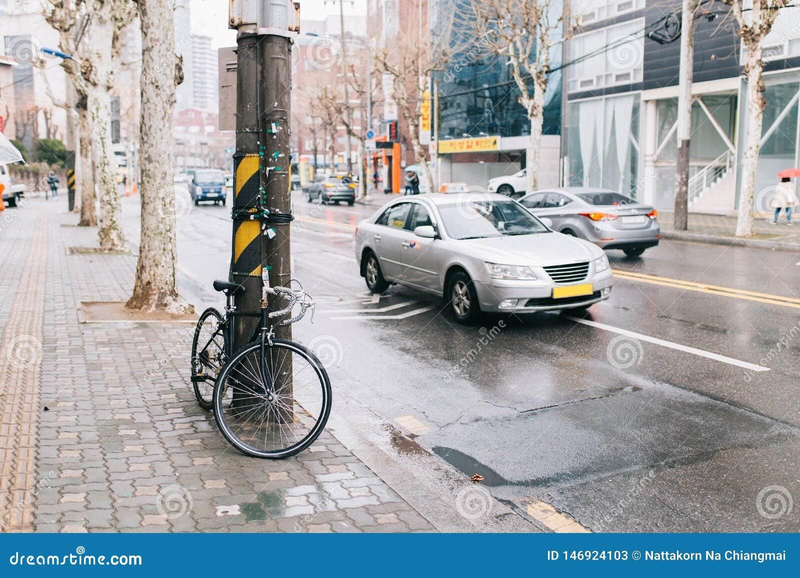 Drogowy bicykl na miasto ulicie park przy drzewnym sideroad, miastową sceną, drogowym rowerem i samochodem,