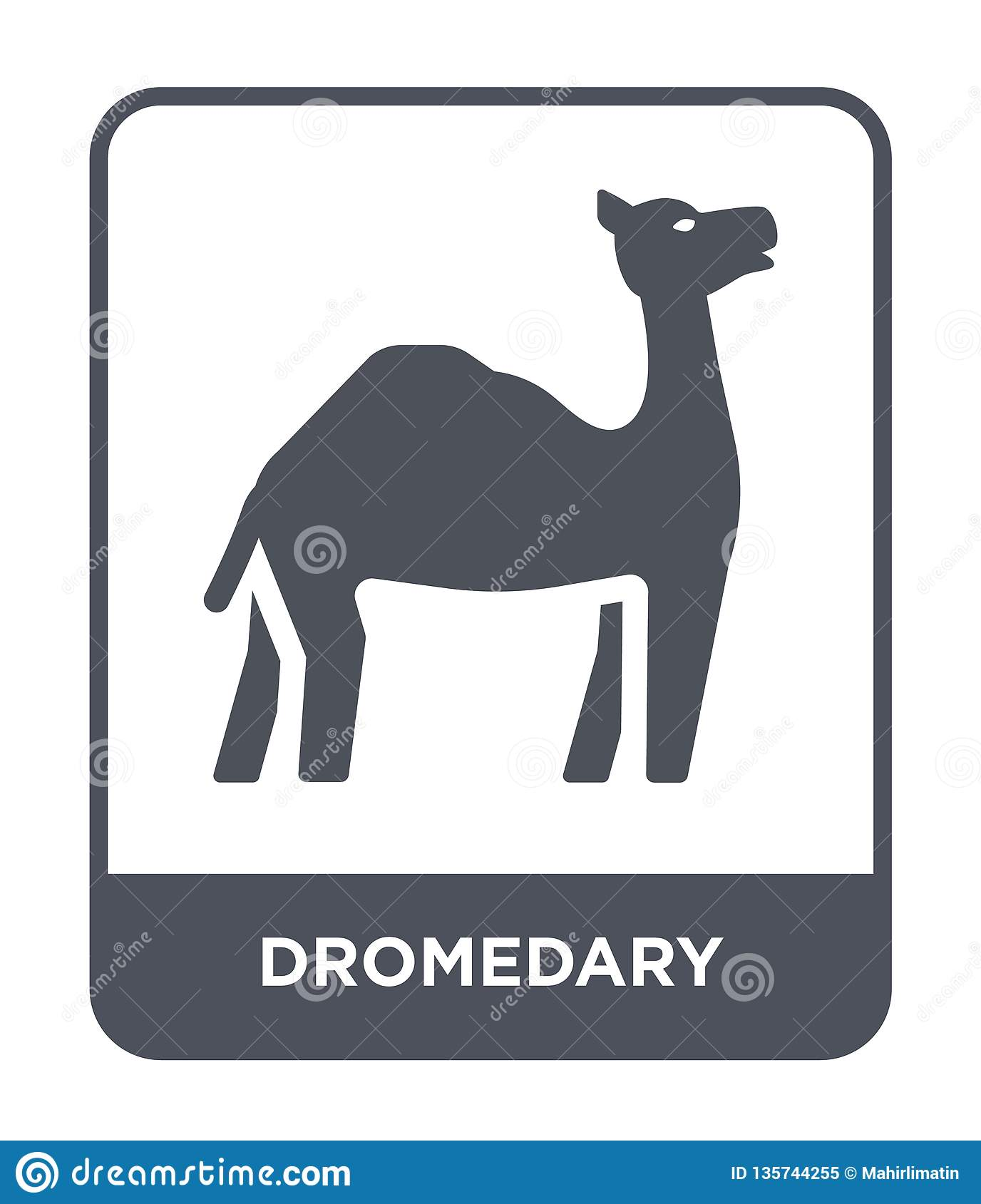 dromedary icon in trendy design style. dromedary icon isolated on white background. dromedary vector icon simple and modern flat